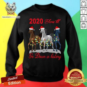 Cute Three Horse 2020 You Will Go Down In History Christmas Sweatshirt - Design By T-shirtbear.com